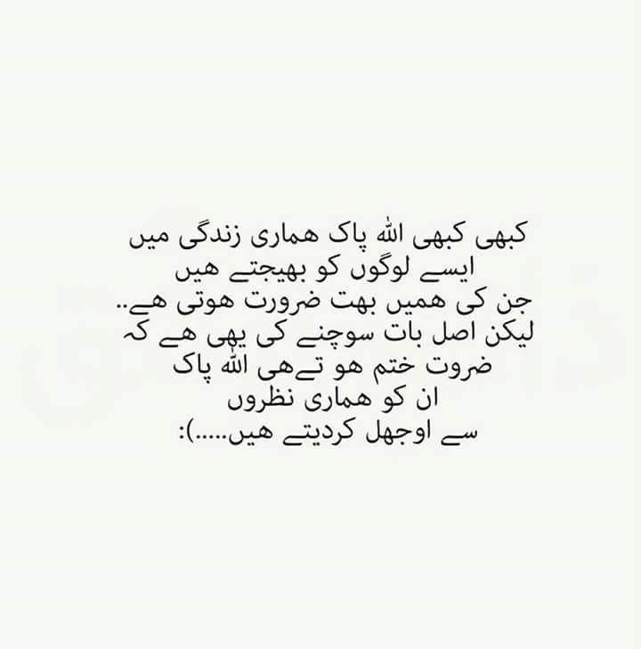 voucher meaning in urdu
