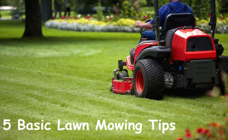 5 Basic Lawn Mowing Tips