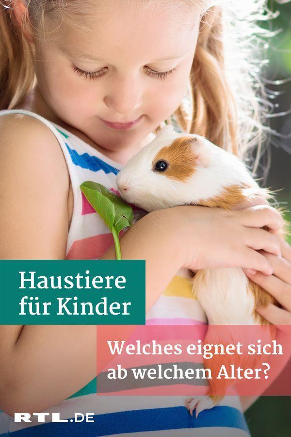 Haustiere Fur Kinder Welches Tier Eignet Sich Ab Welchem Alter Haustiere Fur Kinder Haustiere Und Kinder