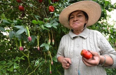 A real organic farmer