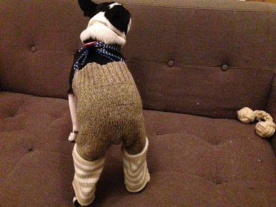 ボストンテリアのカールさんの暮らし: いらなくなったトレーナーやセーターをリメイク!『犬用のおむつカバーパンツの作り方』