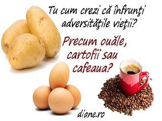 diane.ro: Cartofii, ouăle şi cafeaua - Poveste cu tâlc
