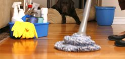 Bains Cleaning offer you a professional cleaning services for Perth Suburbs.