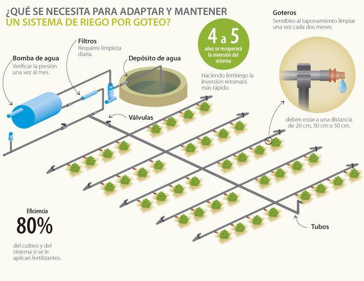 Las 25 mejores ideas sobre sistema de riego por goteo en - Sistema riego goteo ...