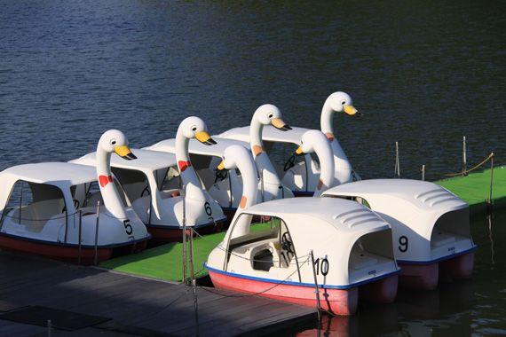 保養村ボート乗り場