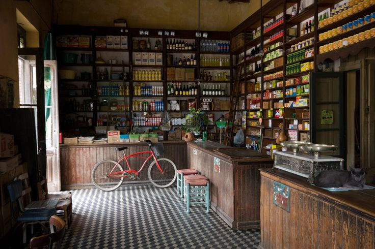 smashing bar/grocery shop with old wooden shelves and counters (but the cat should get off them)Los Principios Almacen & Bar, Argentina. for sale as print by the photographer.
