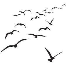 die besten 25 vogel schwarz wei ideen auf pinterest schwarz wei wei e fotografie und. Black Bedroom Furniture Sets. Home Design Ideas