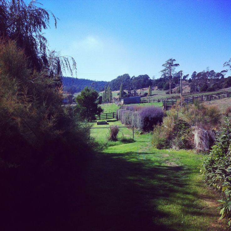 Great view from the farm house doorstep. Tasmania certainly can put on the good weather!