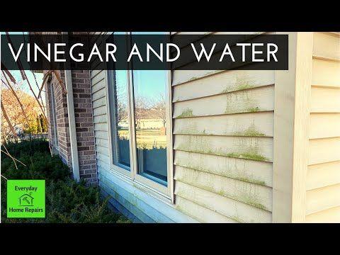 How To Clean Green Algae On Vinyl Siding No Pressure Washer Youtube In 2020 Vinyl Siding Green Cleaning Cleaning Vinyl Siding