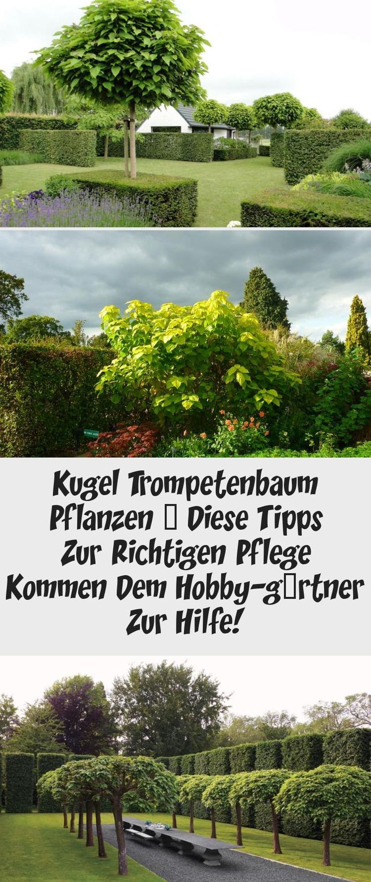 Hobby-Gärtner Nostalgieschild