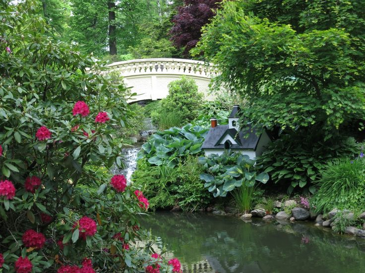 25 trending Halifax public gardens ideas on Pinterest Halifax