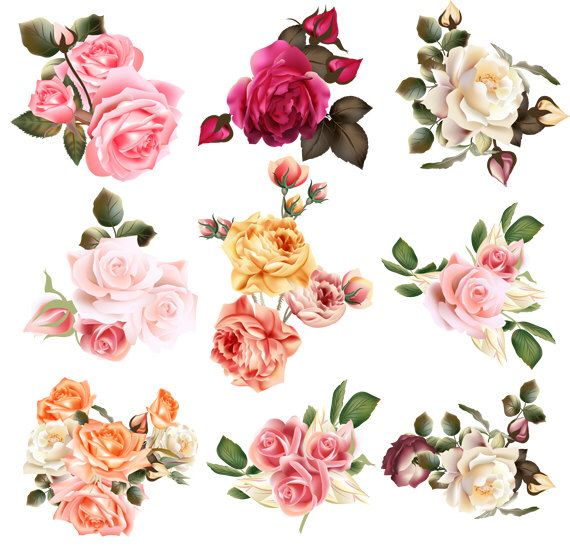 Set Transparent Flower Clipart Wedding Floral Element