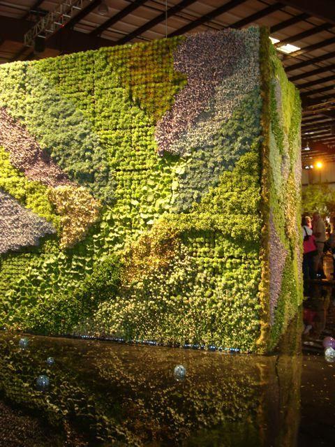 San Francisco Flower and Garden Show fabulous succulent wall