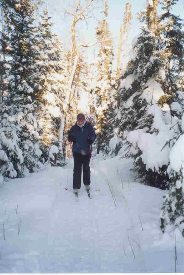 Cross Country ski trails, could be anywhere...