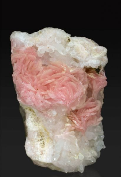 Rhodochrosite with Quartz - Boldut Mine, Cavnic, Maramures, Rumania  64mm x 44mm x 33mm  Rosette aggregates of flattened lenticular crystals with a very intense and uniform pink color, on matrix, with Quartz.