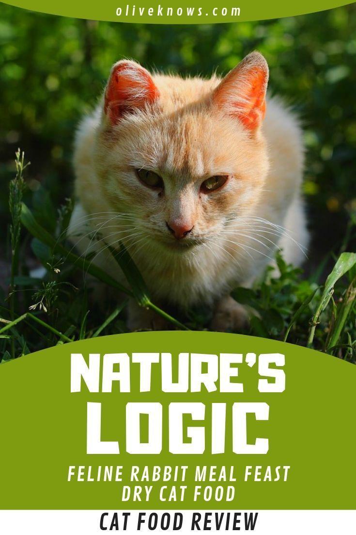 Natures logic feline rabbit meal feast dry cat food