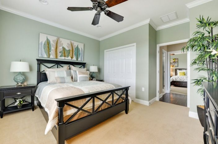 Willow Tree by Sherwin Williams  Kids Bedrooms and Guest Room