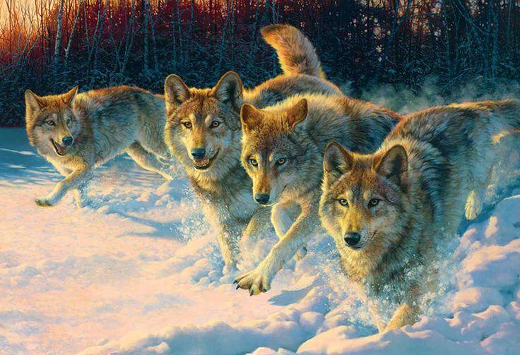 картины с волками