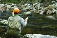 Trout Fly Fishing How To Fish Streamers