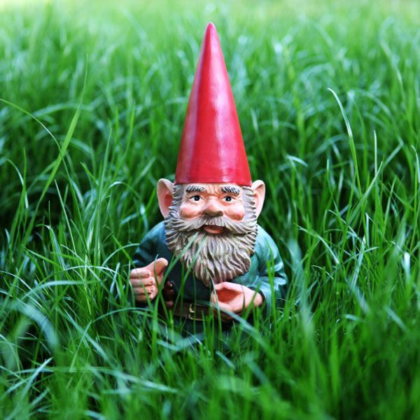gnomes make me grin...