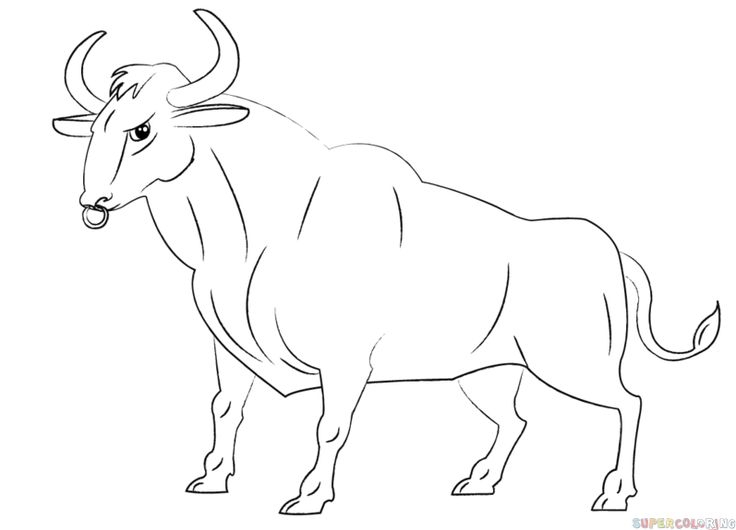 How to draw a cartoon bull step by step. Drawing tutorials for kids and beginners.