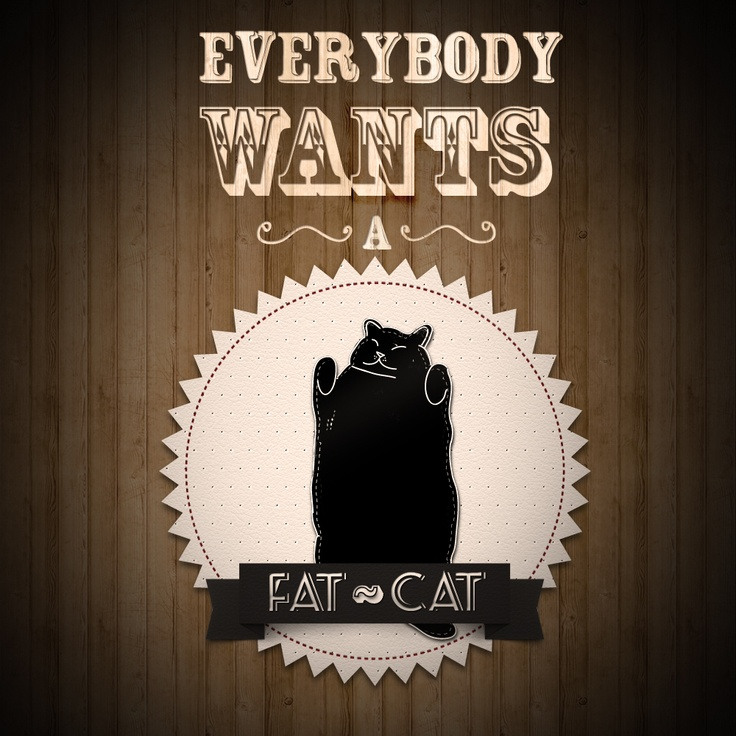 Everybody wants a fat cat: Fat Kitty, Black Cats, Lard Cats, Fat Cats, Cat Grafico, Communication Design