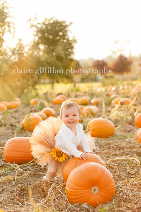 Pumpkin Spice Tutu - Perfect for fall photos and made in any size Newborn - 5T