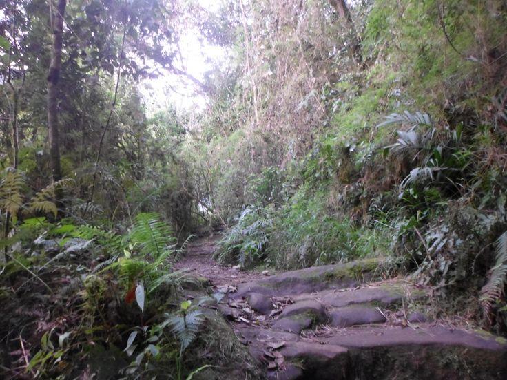 Camino colonial