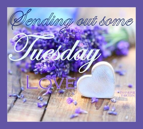 Sending out some Tuesday Love days of the week tuesday happy tuesday tuesday greeting tuesday quote tuesday blessings good morning tuesday