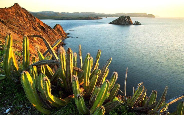 Mexico Landscape 01