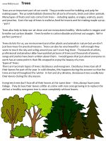 Information About Trees. As we're walking around Kos, Greece, my daughter starts talking about trees. I explained how they make our air clean and then went home and found this great write-up and worksheets about trees!