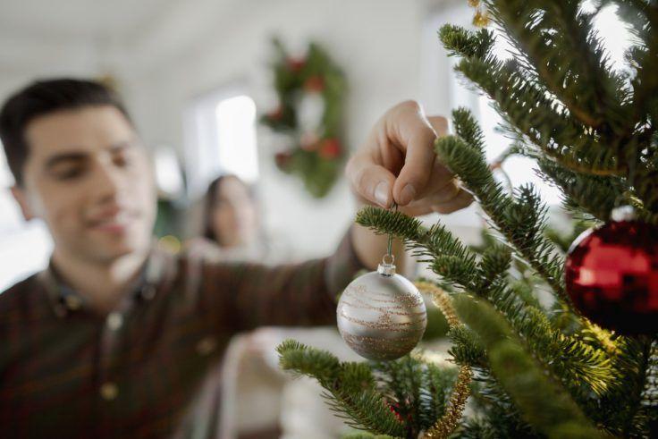 Sapin De Noel 5 Raisons De Choisir Le Sapin Nordmann Decompte
