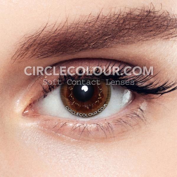 Circlecolour Com Tiramisu Chocolate Enlarge Colored Contact Lenses Cheapcolorcontacts Coloredcontactle Contact Lenses Colored Contact Lenses Colored Contacts