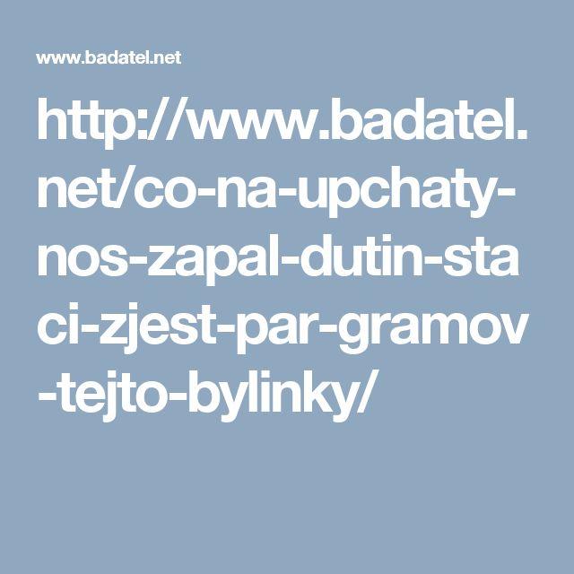 http://www.badatel.net/co-na-upchaty-nos-zapal-dutin-staci-zjest-par-gramov-tejto-bylinky/