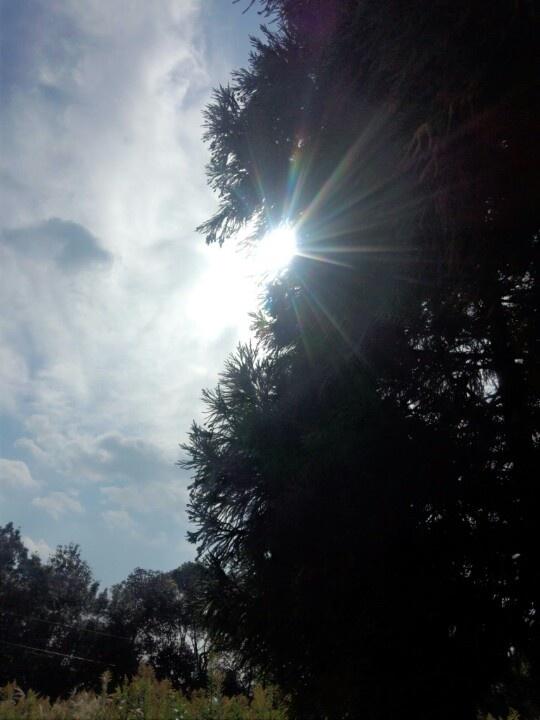 Sunshine autumn sky in Kagoshima