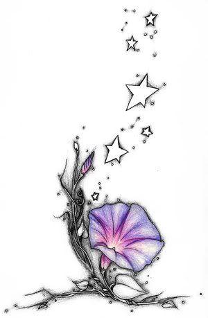 8 best morning glory tattoo images on pinterest morning glory rh pinterest com Exotic Morning Glory Wild Morning Glory