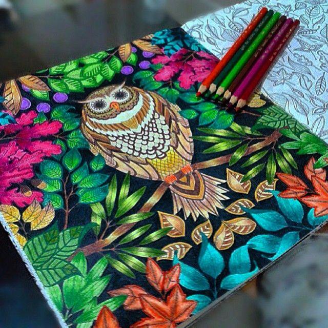 flores jardim secreto:Johanna Basford's Secret Garden in the Owl Coloring