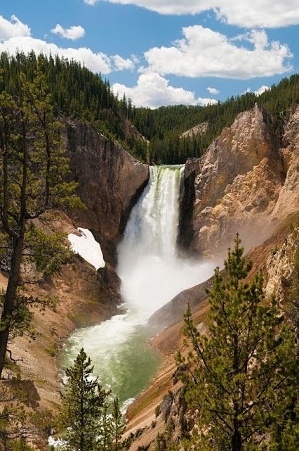 yellowstone national park senior singles National park service  national park service officials told yellowstone's departing  than any other senior staffer currently in the park service.