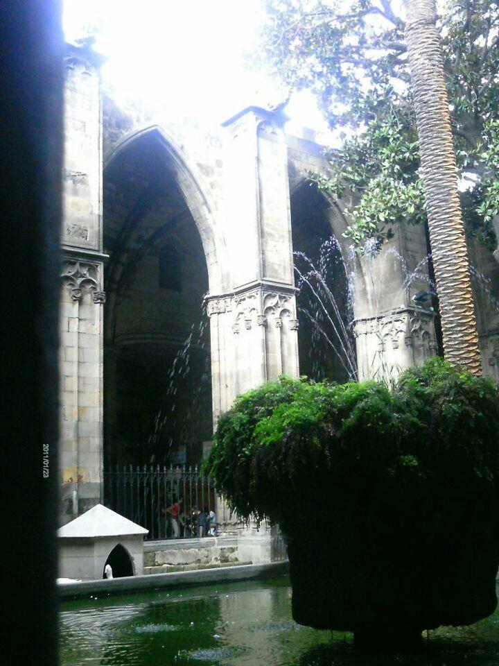 Cathedral Inner Garden