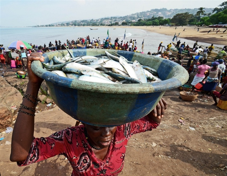 A woman carries a bucket of fish in Goderich on the outskirts of Freetown
