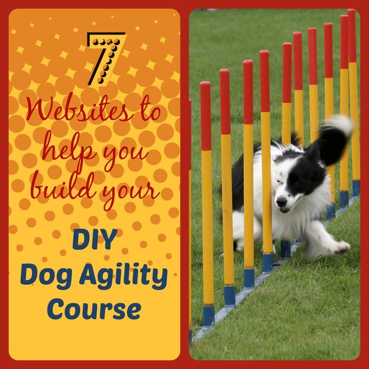 how to build a teeter totter for dog agility