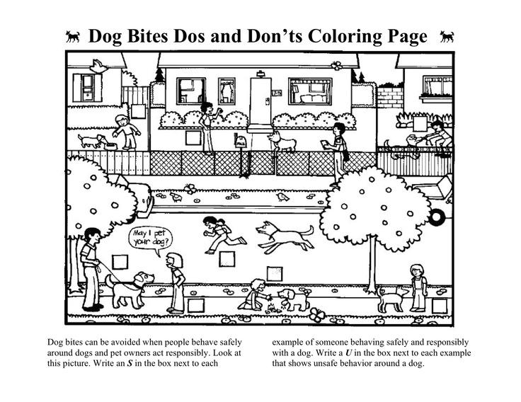 Dog Bite Safety Worksheet