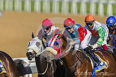 Horse racing jockeys horses in closeup speed action photo