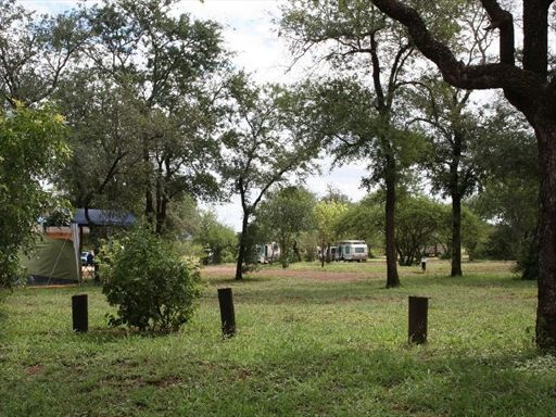 Satara's bustling character comes from its ability to accommodate 200+ people and its central location, which hosts a community of campers set out in a series circles in the middle of the Kruger Park.
