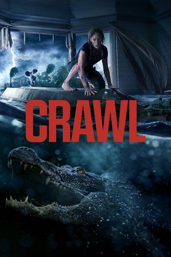 Crawl 2019 En Streaming Vf Films Complets Film Complet En Francais Film Streaming