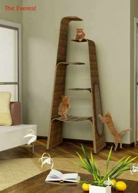 Oh this is just awesome!  For kitties! from: 10 Awesomely Clever Pet Friendly Furniture Items - Oddee.com