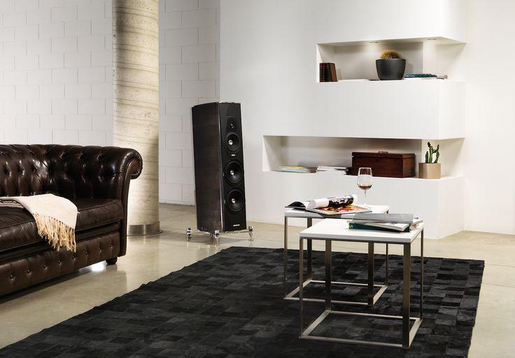 Amati Futura Inside A Modern Living Room. Cabinet DesignMusic ...
