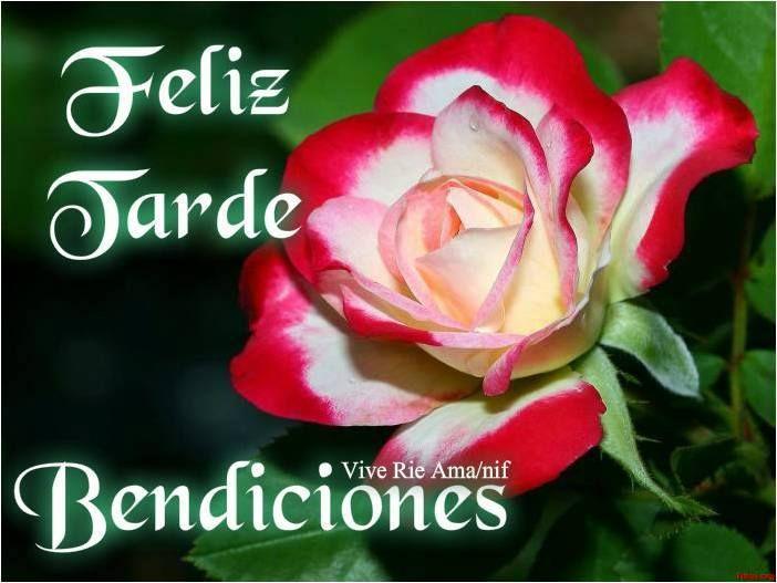 Feliz Tarde, Bendiciones!   http://www.facebook.com ...