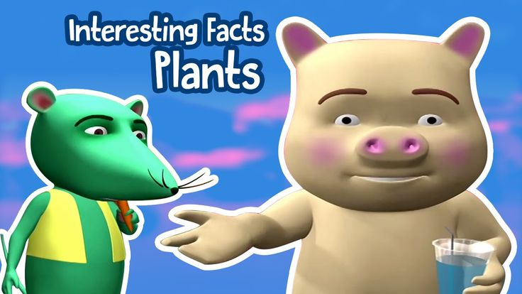 Interesting Facts For Kids | Know About Nature And Plant | Tell Me Why? |