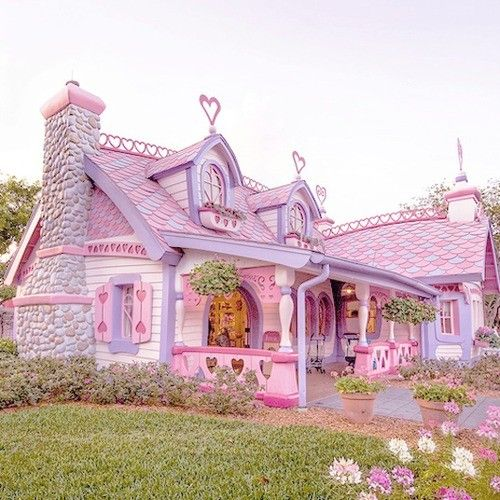 minnie mouse house